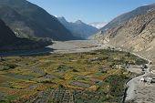 stock photo of kali  - Fields below Marpha in Kali Gandaki river valley mainly growing basmati rice - JPG