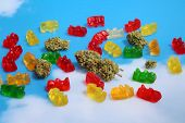 Marijuana Gummy Bears. Marijuana or Cannabis infused gummy candies. THC infused Gummies. CBD Infused poster