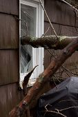 ANDOVER, NJ - OCT 30: A broken window pane from outside a home struck by falling trees after Hurrica