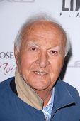 LOS ANGELES - NOV 19:  Robert Loggia arrives to the 'Silver Linings Playbook' LA Premiere at Academy