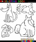 stock photo of newfoundland puppy  - Coloring Book or Page Cartoon Illustration of Funny Dogs or Puppies for Children - JPG