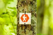 Orange Hiking Trail Sign