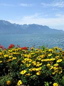 pic of montre  - View from the embankment in the famous Europea resort Montreux - JPG