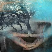 foto of mental_health  - Mixed medium photo based illustration of hands in meditation with tree - JPG