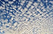 picture of puffy  - Blue summer sky with little white puffy clouds - JPG