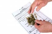 stock photo of maryjane  - A man attempts to roll a  - JPG