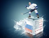 Slovakia-USA game. Spunky hockey player on ice cube