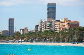 Alicante Playa el Postiguet beach downtown and Esplanada palm trees in Spain
