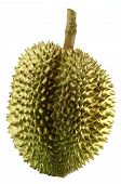 pic of south east asia  - Durian - JPG