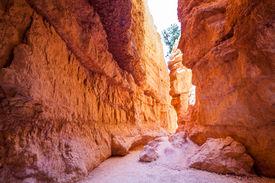 pic of hoodoo  - Amazing hoodoos in Bryce Canyon National Park in Utah USA - JPG