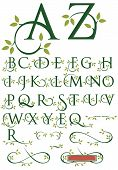 stock photo of initials  - Elegant drop cap vector letters with natural leaf designs.