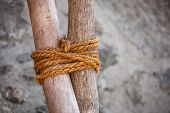 pic of roping  - Example of traditional round lashing of two sticks using hand - JPG