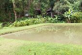 stock photo of sprinkler  - the pond with the banana tree and sprinkler at waterside - JPG