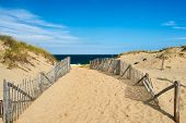 foto of cape-cod  - Path way to the beach at Cape Cod - JPG