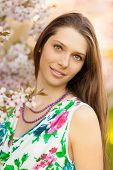 picture of orchard  - Beautiful young brunette woman in blooming orchard - JPG
