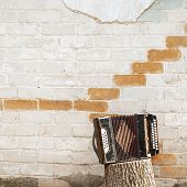 picture of accordion  - accordion on the stump near the wall background - JPG