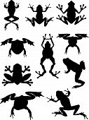 foto of foreshortening  - Set of vector silhouette frogs in different foreshortenings and poses - JPG