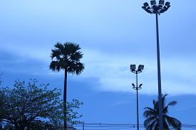 stock photo of light-pole  - Tree lighting pole is the sky in the background - JPG