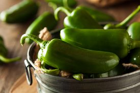 picture of jalapeno  - Organic Green Jalapeno Peppers in a Bowl - JPG
