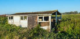 stock photo of slab  - Old dilapidated small shed made of concrete slabs and with a corrugated roof overgrown with wild plants in early morning sunlight - JPG