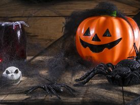 picture of antichrist  - Halloween party toys with pumpkin and spiders - JPG