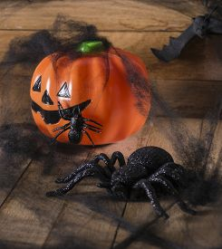 foto of antichrist  - Halloween party toys with pumpkin and spiders - JPG