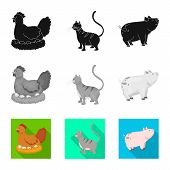 Vector Illustration Of Breeding And Kitchen  Icon. Set Of Breeding And Organic  Vector Icon For Stoc poster
