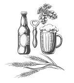 Beer Sketch Elements. Drawing Hand Drawn Items, Beer Bottle And Mug, Bitter Hop, Vintage Wheat Ingre poster