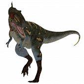 Nanotyrannus Dinosaur On White 3d Illustration - Nanotyrannus Was A Carnivorous Theropod Dinosaur Th poster