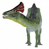 Olorotitan Dinosaur Crest 3d Illustration - Olorotitan Was A Duckbill Crested Herbivorous Dinosaur T poster