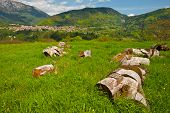 stock photo of afforestation  - Medieval Italian Town Surrounded by Fields and Mountains - JPG