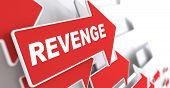 Постер, плакат: Revenge Concept