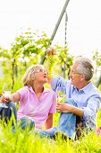 Senior Couple of man and woman having picnic on summer meadow drinking wine in vineyard, he spoils h