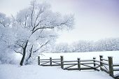 stock photo of sleet  - Winter - JPG