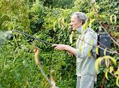 stock photo of pesticide  - man spraying of pesticide on country garden in summer - JPG
