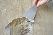 stock photo of trowel  - Removing the old wallpaper from the wall using trowel - JPG