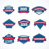 picture of cricket  - Blue sticker - JPG