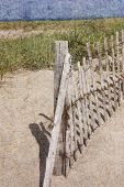 picture of cape-cod  - Beach fence on beach in Truro - JPG