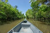 image of negro  - Wide angle view of boat and canal in Rio Negro - JPG