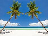 stock photo of boracay  - Tropical beach with beautiful palm and white sand Philippines Boracay Island - JPG