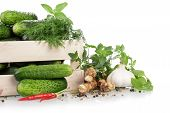 stock photo of crate  - Cucumbers in crate with herbs and spices - JPG