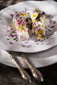 stock photo of edible  - Presentation of goat cheese rolls with edible flowers - JPG