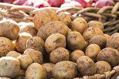 stock photo of farmers market vegetables  - Fresh organic potatoes at a farmer - JPG