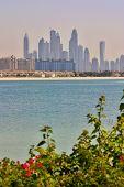 stock photo of emirates  - Vertical picture of Dubai skyline - JPG