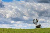 image of shooting-range  - Photo shoot in the park of Madonie in Sicily - JPG
