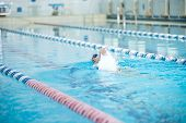 foto of goggles  - Young woman in goggles and cap swimming front crawl stroke style in the blue water indoor race pool - JPG