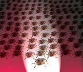 Постер, плакат: Армия коричневый вонь ошибок