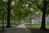 stock photo of hetman  - Oak park alley and old duilding Baturyn Ukraine - JPG