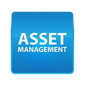 Asset Management Isolated On Shiny Blue Square Button poster