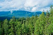 image of perm  - View of taiga in the Kvarkush plateau - JPG